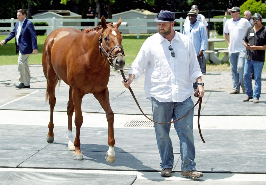 Trainer Doug O'Neill said the decision to scratch I'll Have Another from the Belmont Stakes was unanimous in the wake of the colt's tendinitis in his left front leg. (Associated Press)