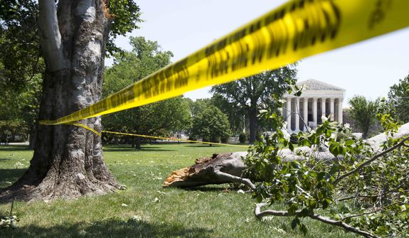 An American Beech tree is down on Capitol Hill grounds in Washington on Saturday, June 30, 2012, across the U.S. Supreme Court after a powerful storm swept across the Washington region late Friday. (AP Photo/Manuel Balce Ceneta)