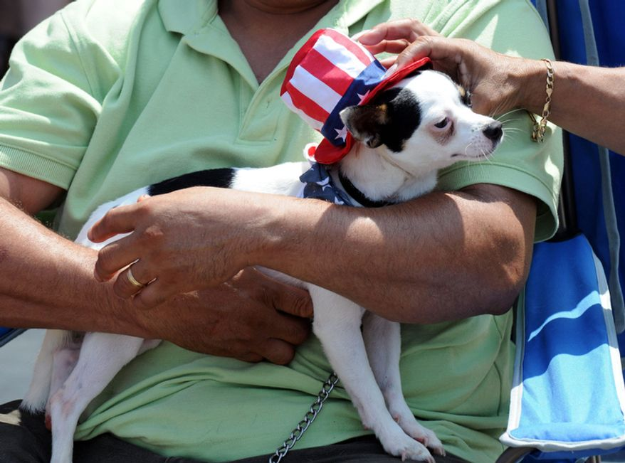 Marco Garcia holds his dog Mickey during the Keystone Heights, Fla., during the 43rd annual Our Country Day celebration of the Fourth of July. (AP Photo/The Florida Times-Union, Bob Mack)