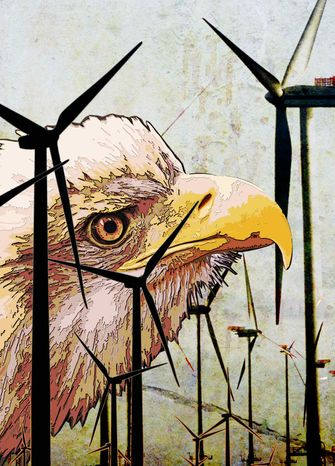 Illustration Windmills Killing Eagles by Greg Groesch for The Washi