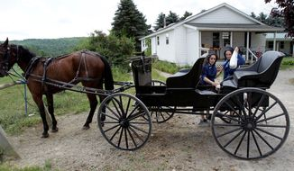 In this July 13, 2011 photo, Amish women shop at an Amish-owned country store in Centerville, N.Y. Centerville, a town south of Buffalo, has an established Amish community. Longstanding Amish population centers in Pennsylvania and Ohio have lost families while Amish numbers in New York have boomed in the past two years, according to a new study by Elizabethtown College researchers. (AP Photo/David Duprey)