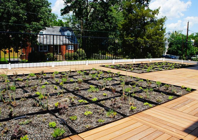 Photograph provided by Roger LIn  The Passive House in South Arlington features a modular scheme the uses shallow square trays of plants.