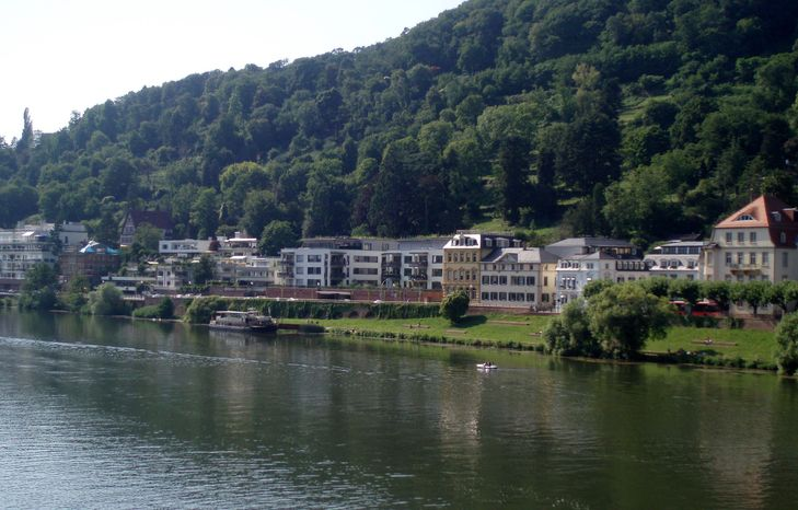A river cruise offers views of mansions along the Neckar River in Heidelberg