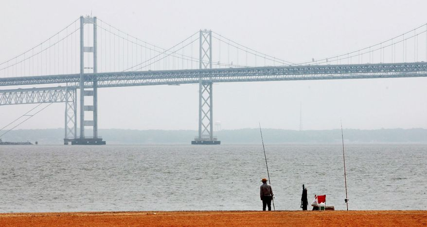 A visitor looks out over the Chesapeake Bay, with the Bay Bridge in the background, at Sandy Point State Park in Annapolis. The Environmental Protection Agency helps fund the Bay Journal, a publication of the Alliance for the Chesapeake Bay. (Associated Press)