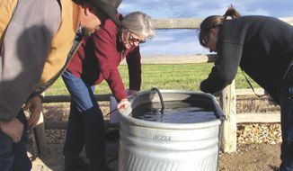 ** FILE ** John Fenton and others examine neighbor Louis Meeks' water in 2007 in Pavillion, Wyo., where federal officials indicated people shouldn't drink water from 40 wells in and around this central Wyoming farming and ranching community. (AP Photo/Casper Star-Tribune, Dustin Bleizeffer)