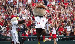 Teddy Roosevelt, one of the Washington Nationals' racing presidents, celebrates after crossing the finish line winning the Presidents Race for the first time in the event's seven-year history at Nationals Park during a baseball game between the Washington Nationals and Philadelphia Phillies in Washington, Wednesday, Oct. 3, 2012. (Associated Press)
