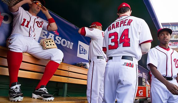 Washington Nationals third baseman Ryan Zimmerman (11), center fielder Bryce Harper (34), and others gets ready for the game in the dugout as the Washington Nationals play the St. Louis Cardinals in game three of Major League Baseball playoffs at Nationals Park, Washington, D.C., Wednesday, October 10, 2012. (Andrew Harnik/The Washington Times)