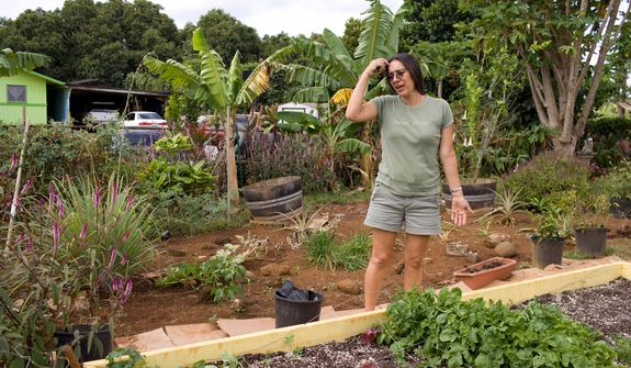 In this Saturday, Oct. 16, 2010 photo, Lillie Gonzales discusses growing vegetables in her home garden to help feed her family, in Omao, Hawaii on the island of Kauai.  Lillie Gonzales does whatever it takes to provide for three ravenous sons who live under her roof. She grows her own vegetables at home on Kauai, runs her own small business and like a record 42 million other Americans, she relies on food stamps. Gonzales and her husband consistently qualify for food stamps now that Hawaii and other states are quietly expanding eligibility and offering the benefit to more working, moderate income families. (AP Photo/Marco Garcia)