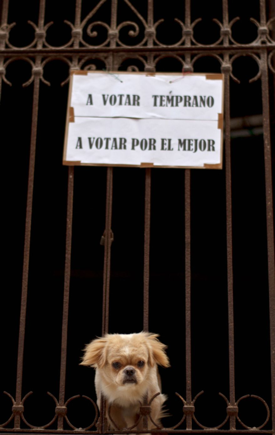 """Under a sign that reads in Spanish """"vote early, vote for the best"""",  a dog peers through the fence of a house near a polling station in Havana Sunday Oct. 21, 2012.  Cubans are going to the polls Sunday to vote in municipal elections.(AP Photo/Ramon Espinosa)"""