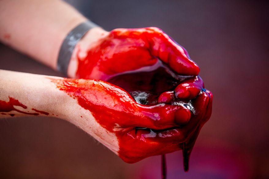 Corn syrup and starch dyed with red food coloring, which resembles blood, drips off a zombie participants hands. Volunteers who wish to become zombies must go through a 'zombification' process where they become drenched in blood to play the part of a real life zombie. (Andrew S. Geraci/The Washington Times)