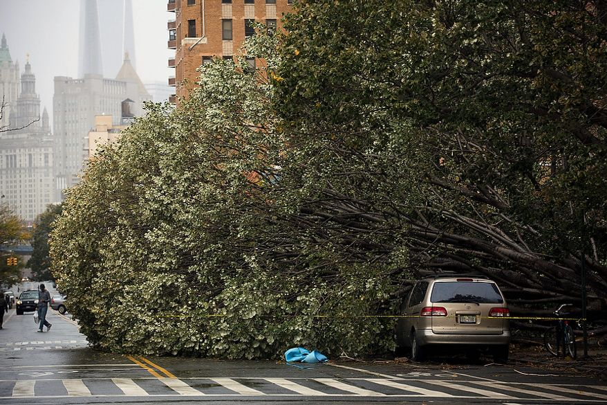 A fallen tree rests beside a parked car on East Broadway in Manhattan's Lower East Side neighborhood, Tuesday, Oct. 30, 2012, in New York. New York City awakened Tuesday to a flooded subway system, shuttered financial markets and hundreds of thousands of people without power a day after a wall of seawater and high winds slammed into the city, destroying buildings and flooding tunnels.  (AP Photo/ John Minchillo)
