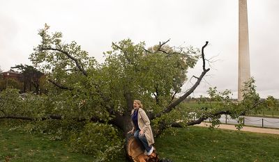 Autumn Orme, of Hyattsville, Md., poses for a friend on a fallen tree on 14th Street SW, on the National Mall in Washington, D.C., Tuesday, Oct. 30, 2012, the day after Hurricane Sandy slammed into the region. (Rod Lamkey Jr./The Washington Times)