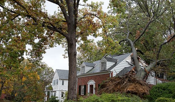 A huge tree crashed into this home on South Overlook in the Beverley Hills neighborhood of Alexandria, Va. during Hurricane Sandy. Fortunately no one inside the home was hurt. This image was made Tuesday, Oct. 30, 2012. (Barbara L. Salisbury/The Washington Times)