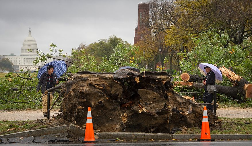 People pass by a fallen tree on 14th Street SW on the National Mall in Washington, D.C., Tuesday, Oct. 30, 2012, the day after Hurricane Sandy slammed into the region. (Rod Lamkey Jr./The Washington Times)