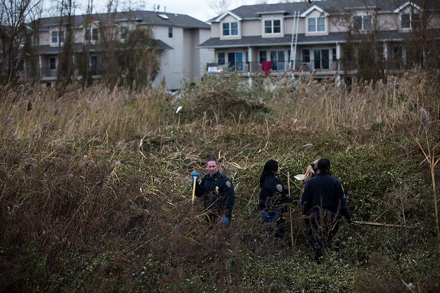 NYPD police officers perform a search in high grasses that were flooded during a storm surge, Wednesday, Oct. 31, 2012, in the Arrochar neighborhood of the Staten Island borough of New York. Sandy, the storm that made landfall Monday, caused multiple fatalities, halted mass transit and cut power to more than 6 million homes and businesses. (AP Photo/ John Minchillo)