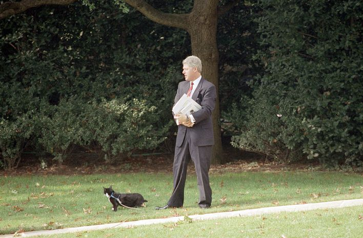 President Clinton stops for a visit with first family cat, Socks as he arrived back to the White House in Washington on Thursday, Oct. 21, 1993 after speaking to a business group on his health care package. (AP Photo/Greg Gibson)