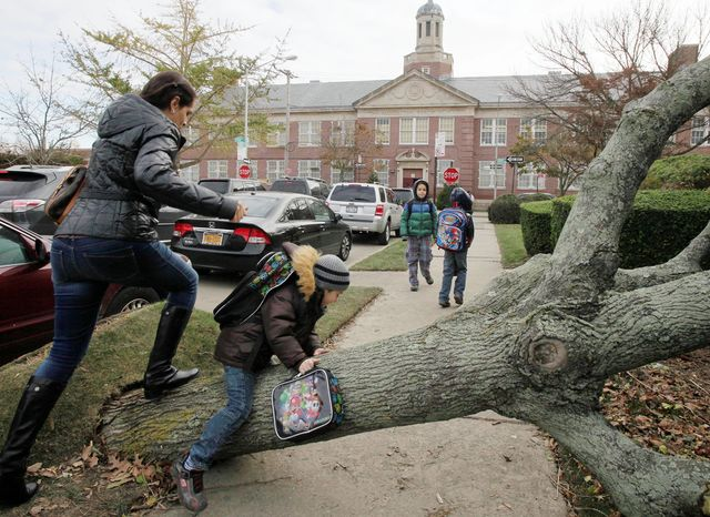 A woman and her son scramble over a tree toppled by Superstorm Sandy as she accompanies him to Public School 195 (background) in the Manhattan Beach neighborhood of Brooklyn in New York on Monday. Monday was the first day of public school for New York City students after the