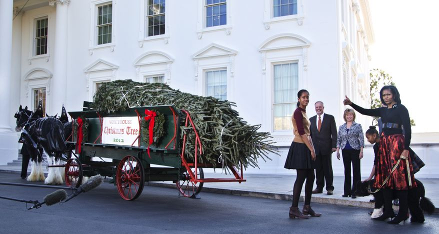 First lady Michelle Obama, daughters Malia (left) and Sasha and the family dog, Bo, welcome the arrival of the official White House Christmas tree, a 19-foot Fraser Fir from Jefferson, N.C., on Nov. 23, 2012, at the North Portico of the White House in Washington. (Associated Press)