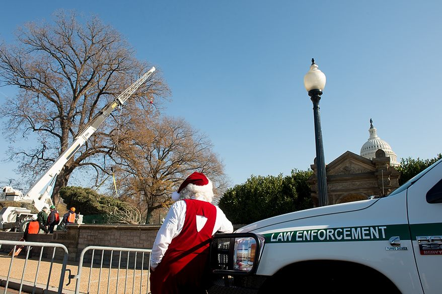 Santa Claus (center), played by Gerald Morris, watches as a 9,000-pound, 74-year-old, 73-foot Engelmann spruce, driven 5,500 miles from White River National Forest in Meeker, Colo., is moved into position on the West Lawn of the U.S. Capitol as this year's Capitol Christmas Tree, in Washington on Monday, Nov. 26, 2012. (Andrew Harnik/The Washington Times)