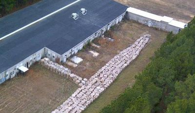 **FILE** This undated file aerial photo provided by the Louisiana State Police via the Shreveport Times shows part of the smokeless explosive powder improperly stored outside Explo Systems Inc., a munitions dismantling facility at Camp Minden at Doyline, La. Explo Systems is currently under investigation for improperly storing millions of pounds of a military propellant, prompting the evacuation of the nearby town of Doyline. (Associated Press/Louisiana State Police via The Shreveport Times)
