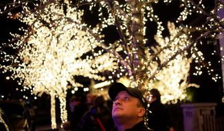 "Erik Hall of Rochester, N.Y., looks up at the elaborate holiday displays during a tour in the Brooklyn borough of New York. Each holiday season, tour operator Tony Muia takes tourists from around the world on his ""Christmas Lights & Cannoli Tour"" visiting the Brooklyn neighborhoods of Dyker Heights and Bay Ridge, where locals take pride in over-the-top holiday light displays. (AP Photo/Seth Wenig)"