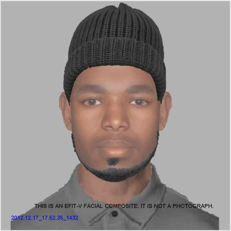 This is a composite of the suspect in the sexual assault of a 15
