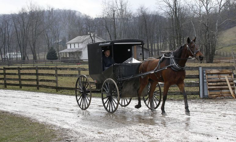 **FILE** An Amish buggy is driven down the road Jan. 29, 2013, between the farms in Bergholz, Ohio, that are worked by the families of sixteen men and women convicted in beard-cutting attacks on fellow Amish. (Associated Press)