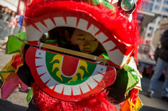 James Yuen, 4, of Germantown, Md., dress as a small dragon before Washington, D.C. celebrates the Chinese New Year with a parade down H Street in Chinatown for the year of th