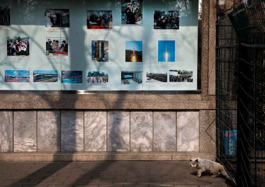 "A cat walks out from a fence near a display of photos of the late North Korean leader Kim Jong Il, new leader Kim Jong Un and the country's successful long range rocket launch, outside the North Korean embassy in Beijing Tuesday, Feb. 12, 2013. North Korea apparently conducted a widely anticipated nuclear test Tuesday, strongly indicated by an ""explosion-like"" earthquake that monitoring agencies around the globe said appeared to be unnatural. (AP Photo/Andy Wong)"