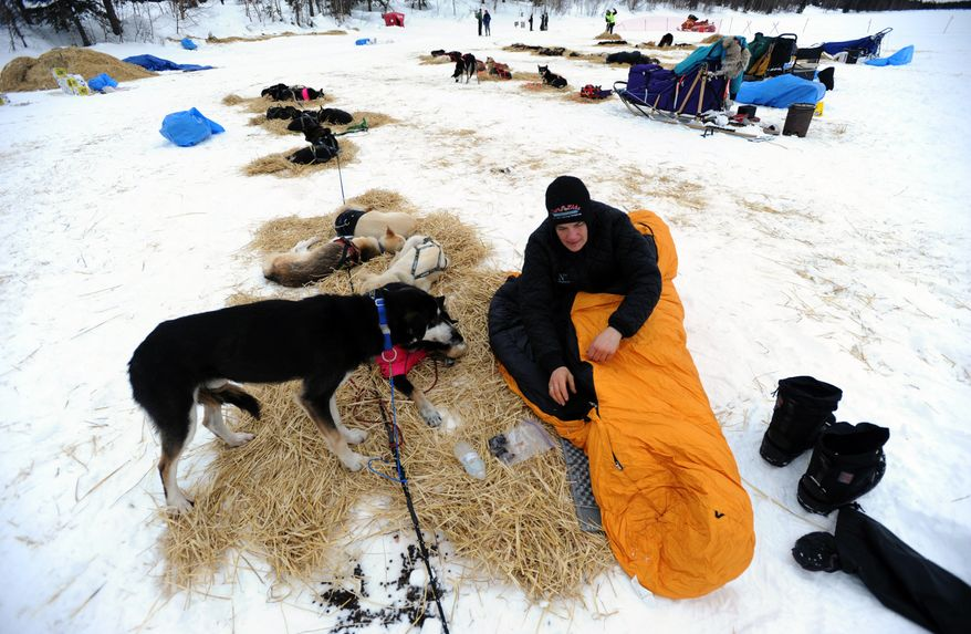 Christine Roalofs prepares to rest with her dogs at the Finger Lake checkpoint in Alaska on Monday, March 4, 2013, during the Iditarod Trail Sled Dog Race. (AP Photo/The Anchorage Daily News, Bill Roth)