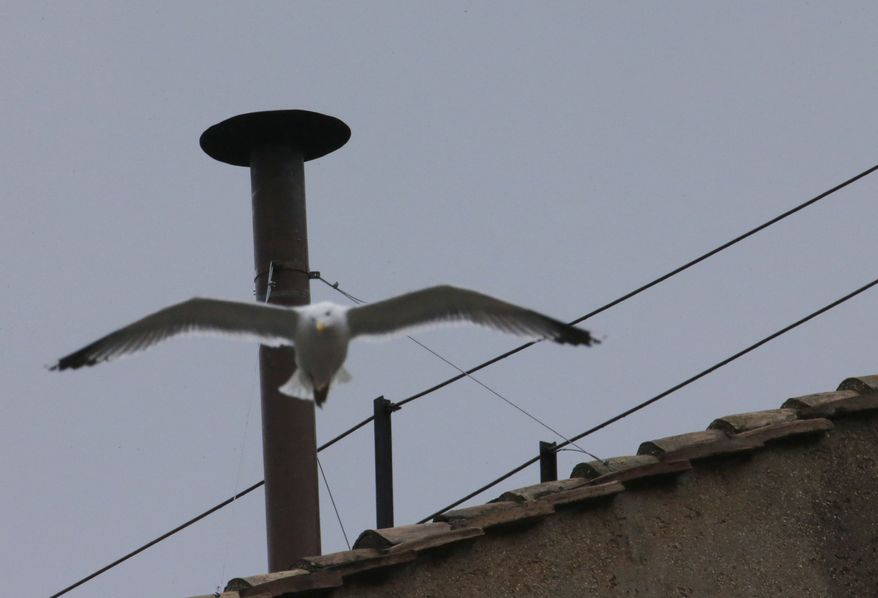 "A seagull glides past the chimney on the roof of the Sistine Chapel, in St. Peter's Square at the Vatican, Tuesday, March 12, 2013. The most gazed-at item at the Vatican this week will be a humble, copper, 2-meter (6-foot) high chimney that will pipe-out puffs of smoke to tell the world if there's a new pope. Black smoke means ""not yet."" White smoke means ""pope elected."" (AP Photo/Dmitry Lovetsky)"