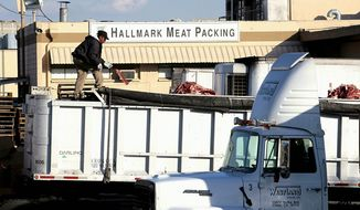 **FILE** A worker throws a piece of meat among cattle carcass scraps dropped into a truck at the Hallmark Meat Packing slaughterhouse in Chino, Calif., on Jan. 30, 2008. (Associated Press)
