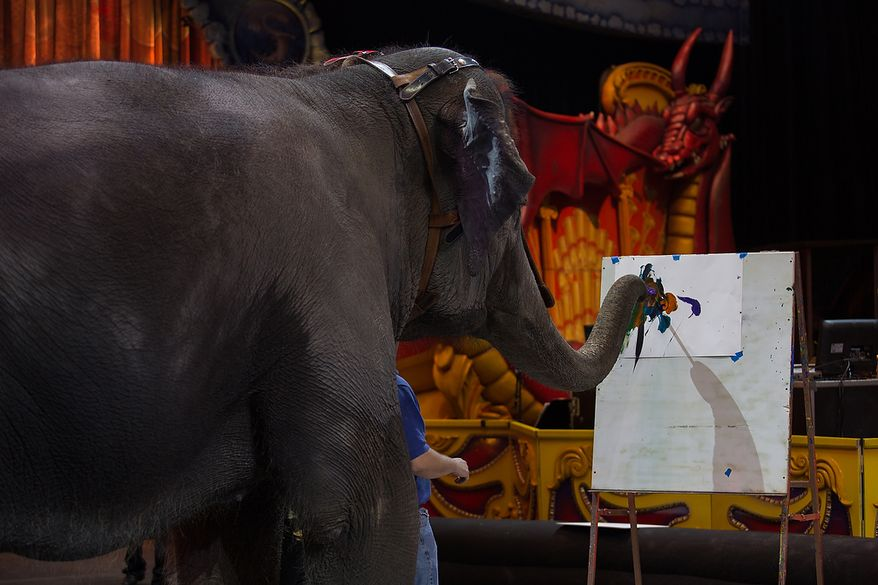 Kelly Anne, a 17 year old Asian elephant, with the Ringling Brothers, uses her trunk to paint a canvas, while children who are in the Young Rembrandts, a school art program, paint picture of Kelly Anne, at the George Mason University Patriot Center, in Fairfax, VA., Thursday, April 11, 2013. (Andrew S Geraci/The Washington Times)