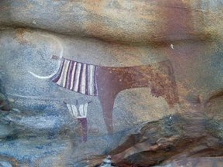 The Laas Geel cave paintings in Somaliland depicting life in the Horn of Africa more than 5,000 years ago include cows sometimes accompanied by a human. In the most unusual drawing (top, left), a cow apparently is draped in ceremonial robes.