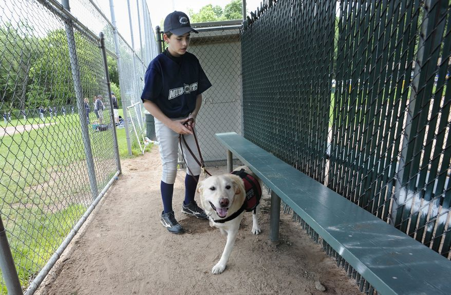 ** FILE ** In this Sunday, May 29, 2011, file photo, Jeff Glazer guides his allergy-sniffing dog, Riley, through a dugout of a ball field before his team's baseball game in Middlebury, Conn. Riley accompanies Jeff to ensure there are no peanut products or residue that could trigger his life-threatening allergic reactions. (AP Photo/Jessica Hill)