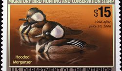**FILE** The 2005-2006 Federal Duck Stamp designed by Mark Anderson of Sioux Falls, S.D., is displayed on Capitol Hill in Washington on June 30, 2005, during the U.S. Fish and Wildlife Service's first day of sale for the 2005-2006 Federal Duck Stamp. (Associated Press)