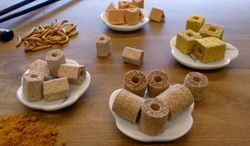 3-D-printed food samples (TNO Research)