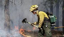 An AmeriCorps volunteer firefighter assigned to the El Paso County Sheriff's Office, Woodland Fire Crew, helps contain a spot fire in an evacuated area of forest, ranches and residences, in the Black Forest wildfire area, north of Colorado Springs, Colo., on Thursday, June 13, 2013. According to officials, at least 360 homes have been burned, and 38,000 people have been evacuated since the fire began earlier in the week. (AP Photo/Brennan Linsley)