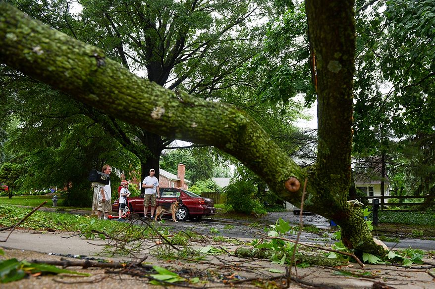Steve Roper and his son Ely, 9, bring their dog, Maverick, out with them as they survey tree damage in the Cloverly neighborhood after severe storms came through the region bringing heavy rain and winds, Silver Spring, Md., Thursday, June 13, 2013. (Andrew Harnik/The Washington Times)