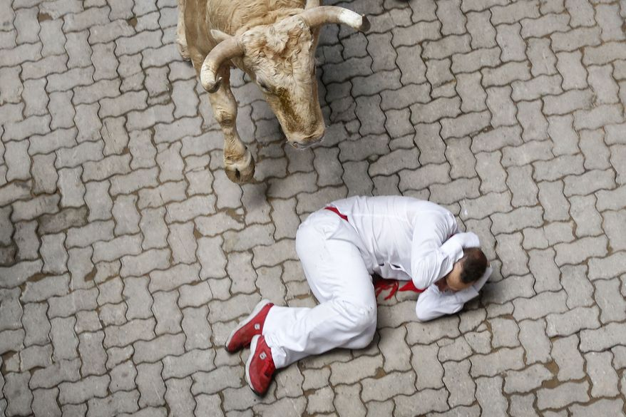 A fallen participant covers his head as a Fuente Ymbro ranch fighting bull approaches him during the running of the bulls of the San Fermin festival, in Pamplona, Spain, Saturday, July 13, 2013. (AP Photo/Daniel Ochoa de Olza)