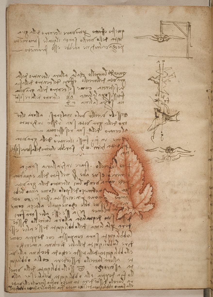 Leonardo da Vinci describes the use of flight testing apparatus to understand aerodynamics. The leaf outline denotes a reused sheet of paper. (Photographs provided by Smithsonian Libraries)