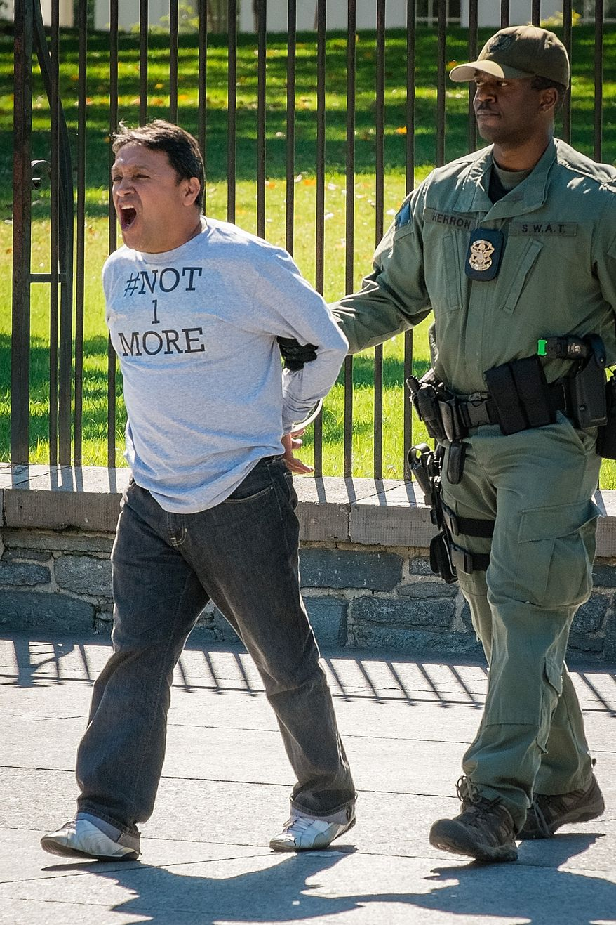 A protester demonstrating against the U.S. immigration policy is arrested after handcuffing himself to the fence in front of the White House on Sept. 18, 2013. (Associated Press)