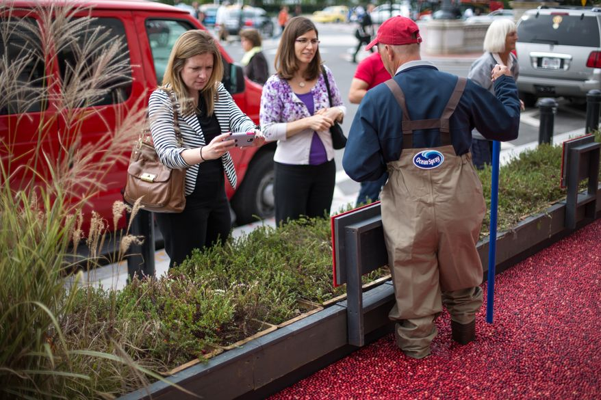 Jim Bible, 52, a Cranberry Farmer from Wisconsin, answers questions for people who are interested in how cranberries are farmed during an informational exhibit on cranberries, presented by Ocean Spray, outside of Union Station in Washington, DC., Tuesday, October 8, 2013.  (Andrew S Geraci/The Washington Times)