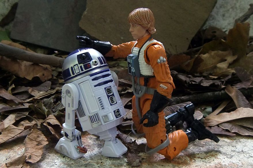Luke Skywalker and R2-D2 from Hasbro's Star Wars: The Black Series 6-inch line of action figures. (Photo by Joseph Szadkowski/The Washington Times)