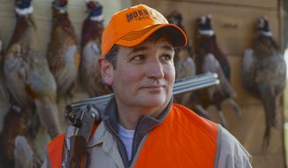 Sen. Ted Cruz, R-Texas, stands in front of pheasants that were shot during a hunt hosted by Rep. Steve King, R-Iowa, on Saturday, Oct. 26, 2013, in Akron, Iowa. Cruz attended the Iowa GOP's annual fundraising dinner in Des Moines, Iowa, on Friday. (AP Photo/Nati Harnik)