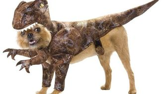 """Americans managed to spend $330,000 on Halloween costumes for their dogs this year. This slip-on canine """"Raptor"""" outfit was designed by Los Angeles-based California Costumes."""