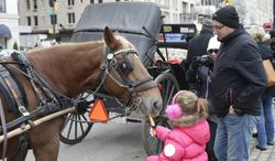 A girl feeds a horse near Central Park on New Year's Eve day, Tuesday, Dec. 31, 2013, in New York. Mayor-elect Bill de Blasio, who will be sworn in tonight, supports ending the practice of horse-drawn carriages. (AP Photo/Frank Franklin II)