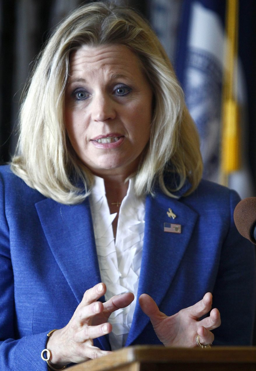 ** FILE ** In this July 17, 2013, file photo, Liz Cheney speaks during a campaign appearance in Casper, Wyo. (AP Photo/Matt Young, File)