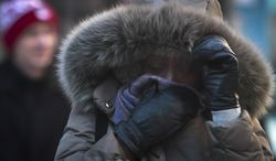 ** FILE ** In this Tuesday, Jan. 7, 2014, file photo, a pedestrian covers up against single-digit temperatures, in New York. (AP Photo/Bebeto Matthews, File)