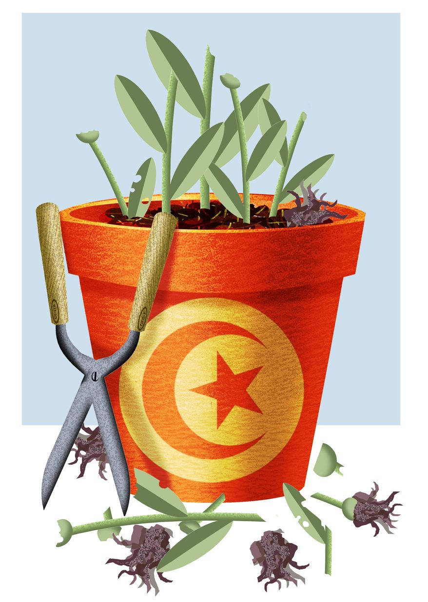 Illustration by Alexander Hunter/The Washington Times